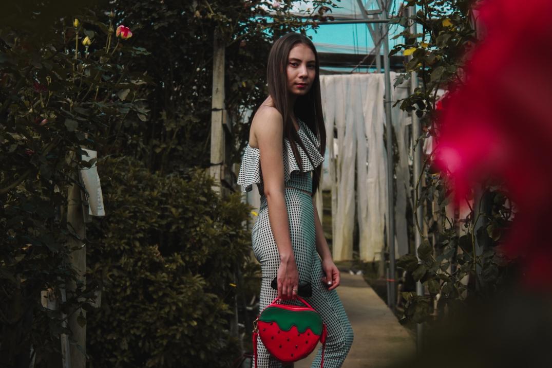 Rosas-7